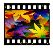 35mm slide. 35mm film frame,Digital art Royalty Free Stock Photos