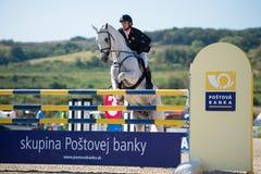 36. Postova Banka-Peugeot großartiges Prix Erscheinen-Springen stockbild