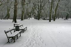 36 zimy. Obrazy Stock