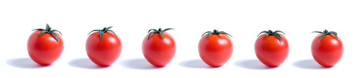 360 ντομάτες κερασιών Στοκ Εικόνες