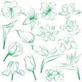 366 kwiatów Fotografia Stock