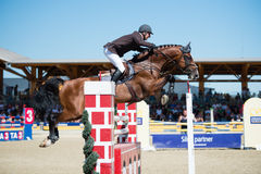 36th Postova Banka-Peugeot Grand Prix Show Jumping Royalty Free Stock Image