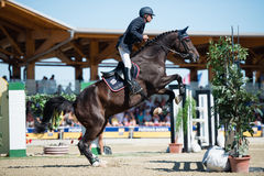 36th Postova Banka-Peugeot Grand Prix Show Jumping Royalty Free Stock Images