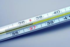 37 grader kvicksilver- termometer Arkivfoton