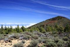 3718 m国家公园teide tenerife 免版税库存照片