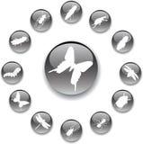 37a έντομα κουμπιών που τίθεν& Στοκ φωτογραφία με δικαίωμα ελεύθερης χρήσης