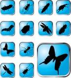 37个按钮昆虫被设置的x 库存图片