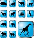 38个动物按钮被设置的x 库存图片