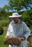 38蜂农 图库摄影