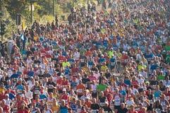 38 2011年柏林马拉松 库存照片