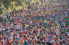 38. De Marathon 2011 van Berlijn stock foto