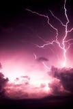 闪电结构树 库存图片
