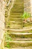 39 kroków Zdjęcie Stock