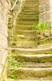 39 steps? Stock Photo