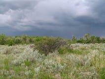 风雨如磐的横向 免版税库存图片