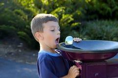 饮水器 免版税库存图片