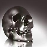 3d头骨 向量例证