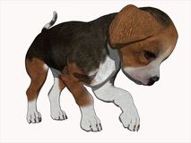 3d小猎犬动画片小狗回报 库存照片
