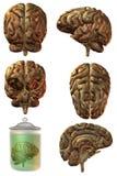 3d脑子人 库存照片
