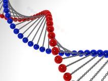 3d脱氧核糖核酸模型分子 免版税库存图片