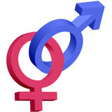 3d蓝色女性被互锁的男性红色符号 库存图片