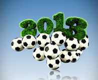 3D 2013 year grass text, title with Footballs Royalty Free Stock Photos