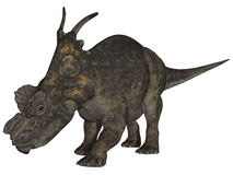 3d achelousaurus恐龙 免版税库存图片