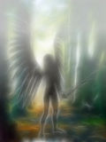 3D angel. An 3D rendered angel silhouette with unfolded wings in a foggy forest Royalty Free Stock Photo