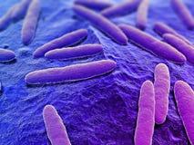 3d bacteria Stock Photo