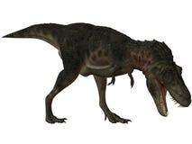 3d bataar恐龙tarbosaurus 库存图片