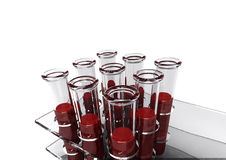 3d Blood Tests. A rack of test tubes ready for blood tests Royalty Free Stock Photos