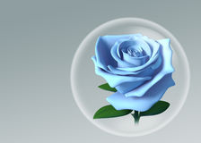 3D blue rose in glass ball. Blue rose in glass ball model 3D. illustration on background Stock Photo