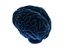 3d brain. 3d rendered illustration of a abstract brain Stock Photo