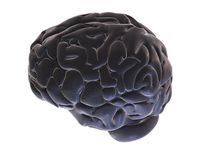 3d brain. 3d rendered illustration of a abstract brain Stock Photos
