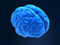 3d Brain Royalty Free Stock Photography