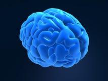 3d brain. 3d rendered anatomy illustration of a blue human brain stock illustration