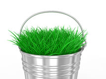 3d bucket of grass Royalty Free Stock Photo