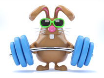 3d Bunny Weightlifter Royalty Free Stock Image