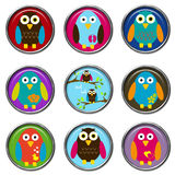 3D Buttons - Birds. Cute 3D Buttons with birds Royalty Free Stock Photography
