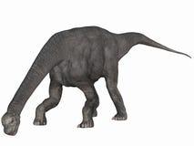 3d camarasaurus dinosaur Obrazy Stock