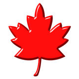 3D Canadian Leaf. Isolated in white Royalty Free Stock Image