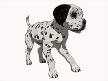 3D Cartoon Render Dalmation Puppy Royalty Free Stock Photo