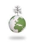 3d cg干燥地球生态结构树 图库摄影