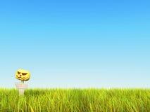 3D. Ciel avec l'herbe et le potiron Image stock