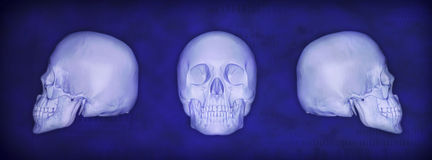 3d cocepts. 3d concept illustrations human skull Royalty Free Stock Images