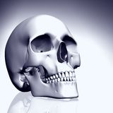 3D colored skull Royalty Free Stock Image