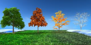 3d concept  Four seasons Royalty Free Stock Images