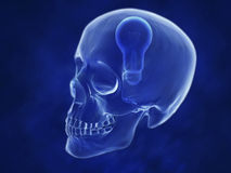 3d concept human scull. 3d concept illustrations of human scull Royalty Free Stock Photos