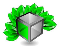 3d cube with leaves Royalty Free Stock Photos
