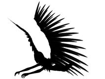 3D dark angel. An 3D rendered angel silhouette with unfolded wings on white background. 45 degrees view Royalty Free Stock Image